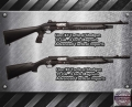 lion_tactical_shotguns_home-defense-advanced-tactical-imports-256-534-4788