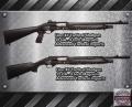 lion_tactical_shotguns_home-defense-advanced-tactical-imports-256-534-4788